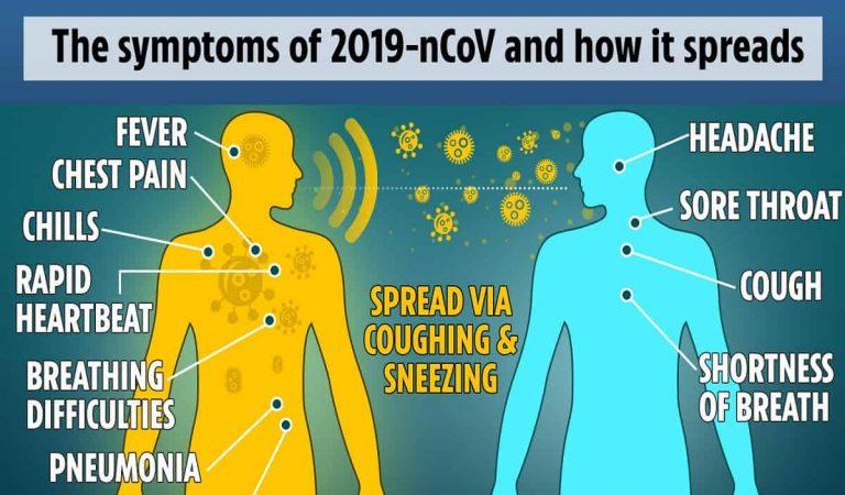 Virus Corona: Apa Saja Gejala, Penyebab, dan Cara Mengatasinya