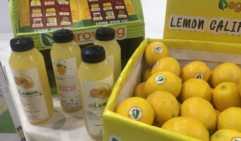 Agrowing: E-Commerce Buah Segar Langsung Dari Petani Lokal