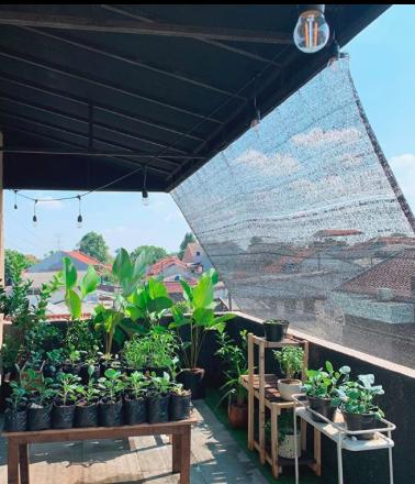 Memanfaatkan Balkon Untuk Berkebun Ala Ayudia Bing Slamet